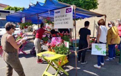 Essonne : vente de fleurs à Breuillet et Saint-Chéron